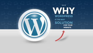 Why WordPress is the best solution for your website