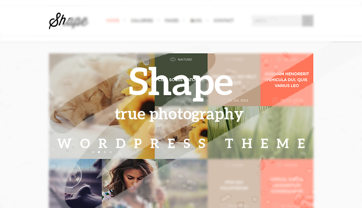 Shape – The True Photography WordPress Theme Launched