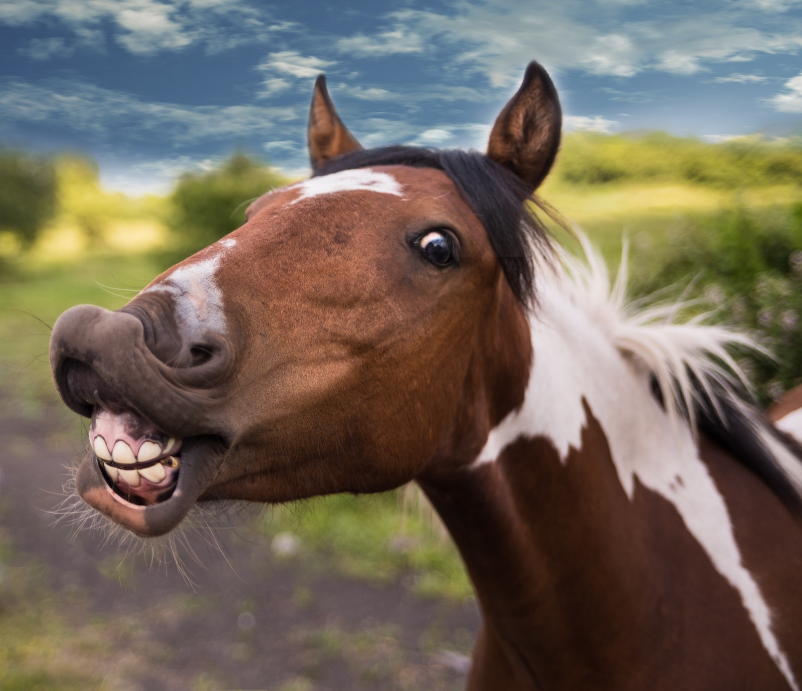 How Humor Can Improve Your Marketing Campaign